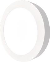 LED panel svítidlo Foyu 25W, 225mm, bílá, 6500K, bílý rámeček kulatý, přisazená